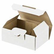Maxibriefkarton und Warensendung Versandkarton SMALL, 120x80x45mm, weiß